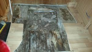 Dabei tritt wasser aus den heizungsrohren aus und führt zu. Gartenhaus Feuchtigkeit Und Schimmel Im Boden Holz