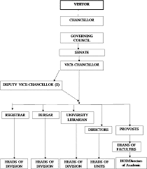 Senate Hierarchy Chart The Central Administration Content