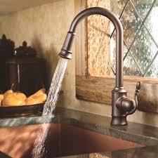 lovely design kitchen faucets ideas antique bronze kitchen faucet idea jpg