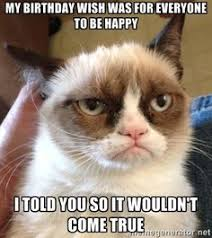 grumpy cat birthday quotes. Delighful Birthday Grumpy Cat Quotes Grouchy Grumpy Jokes Humor  Pictures U2026 For The Best Humor Pics And Memes Funny Visit Www In Cat Birthday Quotes