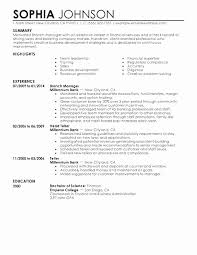 Finance Resume Extraordinary Resume Finance Director Sample Inspirational Resume Examples For