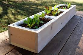 wooden planter bo perth