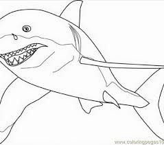 Small Picture Great White Shark Coloring Pages Miakenasnet