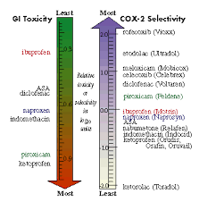 Selective Cox 2 Inhibitors Are They Safer Nsaids