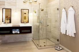 frameless glass shower doors