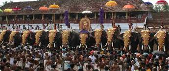 n mirror festivals of summer festivals elephant festival
