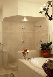 shower designs teach you how to go with the flowbathroom design ideas walk  in spa like