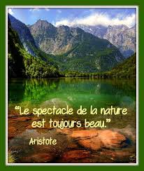 Citation Nature Daristote Balades Comtoises