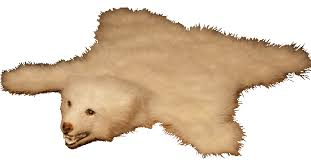 image of elegant bear skin rug with head