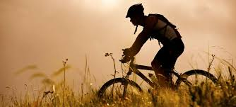 Image result for mtb vaals naar epen