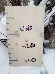 Height Markers For Girls Hibiscus Flower Growth Chart