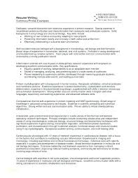 Sample Of Profile In Resume Resume Profile Examples First Job