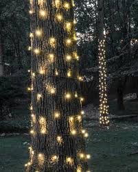 How To Decorate A Tree Trunk With Christmas Lights Wrapping Tree Trunks In The Backyard Is Great Way To Add