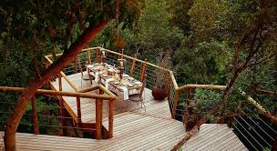 Treehouse Hotel In South Africa Tsala Treetop Lodge  Tree House Treehouse Hotel Africa