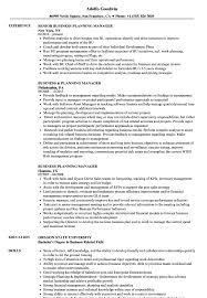 Business Planning Manager Resume Samples Velvet Jobs