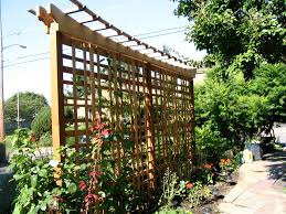 Small Picture Best Patio Trellis Design Ideas Patio Design 158
