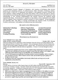 Executive Summary Resume Format