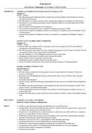 Financial Consultant Job Description Resume Market Consultant Resume Samples Velvet Jobs 100