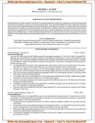 Professional Resume Writing Services Careers Plus Resumes best resume  examples
