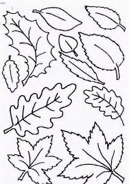 Small Picture Type of Autumn Leaf Coloring Page NetArt