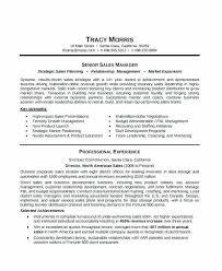 Best Executive Resume Format Resume Sample Web