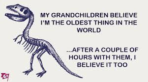Grandparent Quotes Cool Grandparent Quotes