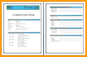 Professional Resume Template Word New Templates For Download Cv 2010 ...