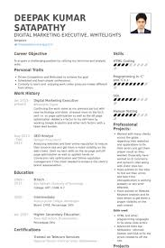 digital marketing resume sample