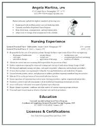 Sample Resume Skills Security Officer Resume Objective Examples
