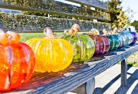 locally blown glass pumpkins are ready for picking at avalon glassworks now through october 31 choose from dozens of styles of glass pumpkins