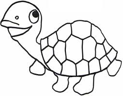 Small Picture Reptile Coloring Pages Bebo Pandco