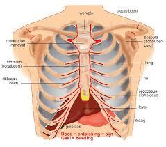 symptomen ontstoken galblaas