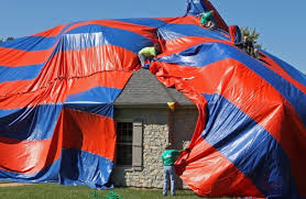 how to kill spiders in house. St. Charles House Is Covered To Eliminate Spiders How Kill In