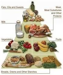 Healthy Eating Diet Chart The Healthy Eating Food Chart Sep Precise Portions