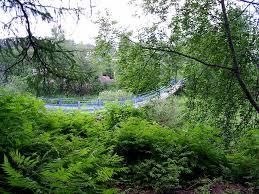 РЕФЕРАТ на тему Висячие мосты Реферат Висячие мосты doc исячие мосты занимают видное место в истории мостостроения Они появились на заре развития человеческого общества и в ранний период имели весьма примитивные