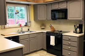Rustoleum Kitchen Transformations Reviews Nice Kitchen Cabinets Ideas For Small Kitchen Kitchen Cabinet