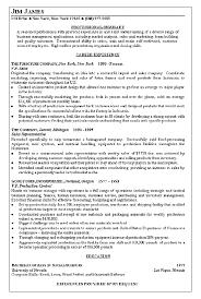 Vice President Resume Samples Vice President Of Sales Resume Examples Pinterest Resume