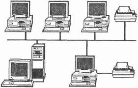 Локальные компьютерные сети Локальная сеть типа линейная шина