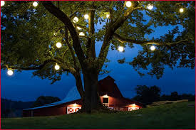 outdoor tree lantern lights finding outdoor lanterns look so wonderful the homy design