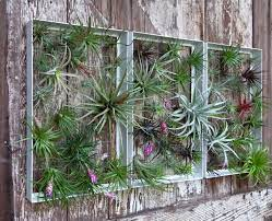 An outdoor fountain is the perfect finishing touch for your garden decor. Living Wall Art Vertical Garden Frames By Airplantman