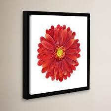 red gerbera daisy framed painting print on gerbera daisy canvas wall art with gerbera daisy wall art wayfair