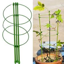 Garden & Patio 45cm Flower Support Vine <b>Plant Climbing Rack</b> ...