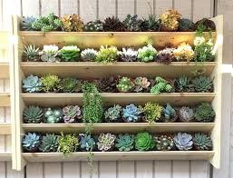 garden wall shelves large size of shelf marvelous outdoor wall shelf image inspirations outdoor marvelous garden