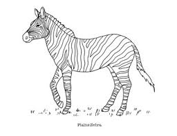 They make loud braying or barking sounds and soft snorting sounds. Plains Zebra Coloring Page By Mama Draw It Teachers Pay Teachers