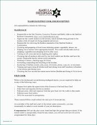 Resume Summary Example New What To Put In A Resume Summary