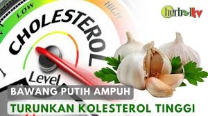 លទ្ធផលរូបភាពសម្រាប់ Turunkan kolesterol