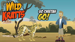 pbs kids games wild kratts go cheetah go cartoon kids game video