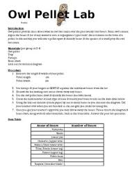 Owl Pellet Bone Chart Worksheets Teaching Resources Tpt