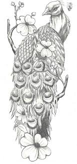 All About Art Tattoo Studio Rangiora