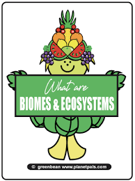 What Are Biomes Habitats Biomes Forests Ecosystems Trees Wood Woodland